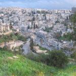 Amman: An Organized City with a Soul