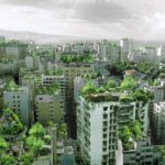 Green Roofs Bring New Life to Beirut
