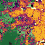 Mapping the Impacts of Urban Growth: Outward vs. Upward in São Paulo and Addis Ababa